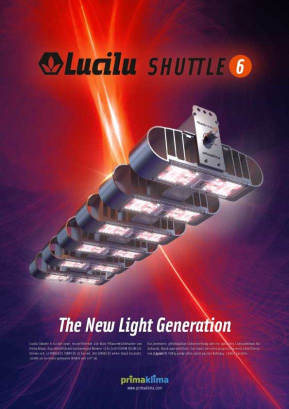 A4 Poster Lucili Shuttle6